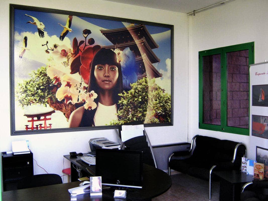 Stampa su muro decorazione adesiva for Carta muro lavabile adesiva